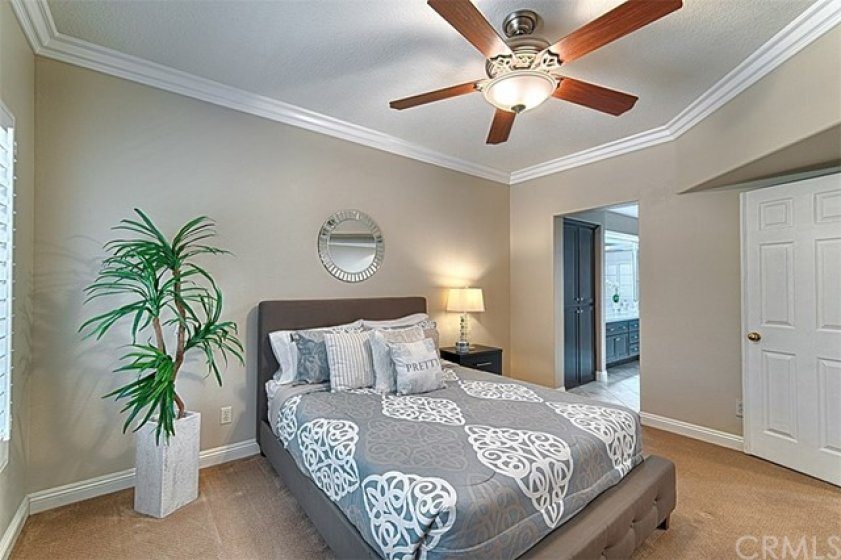 Roomy master suite with lush carpet, large white crown molding and baseboards, lighted ceiling fan, double door entry & attached to the spacious bath.