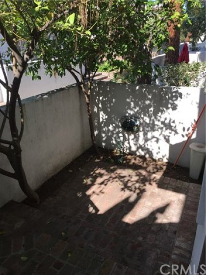 Private front patio with fruit trees!