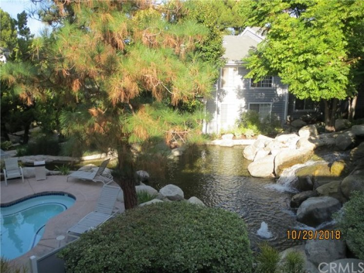 Waterfalls next to Spa and Pool