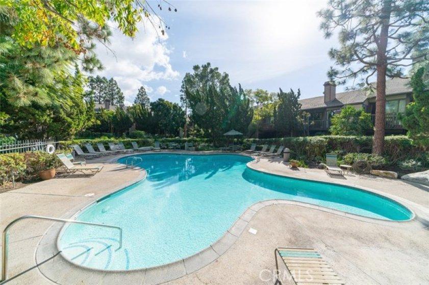 Sparkling community pool & spa
