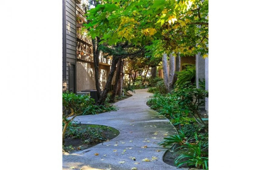 Winding path leading you home