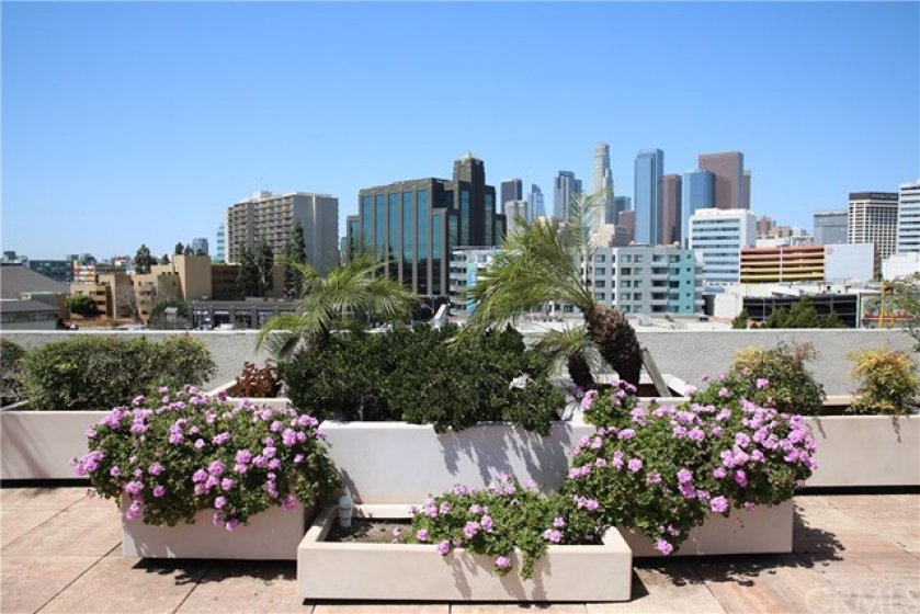 Community Rooftop with Downtown Views