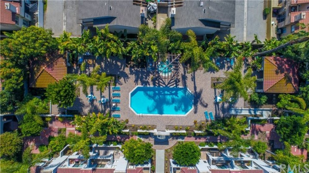 Aerial view of the community pool, spa and Clubhouse area with lush trees and foliage