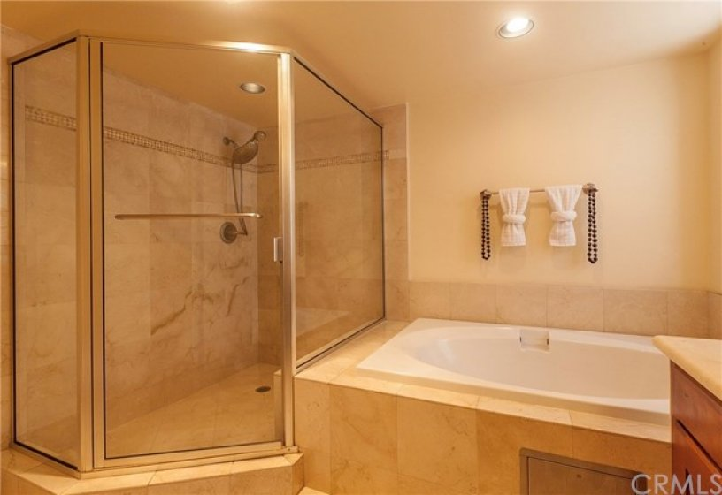 Luxurious Walk-in Shower & Separate Soaking Tub