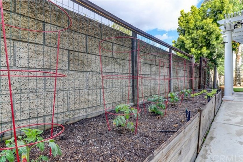 Raised Bed Garden... Get Ready for Farm-To-Table Veggies from Your Very Own Garden!