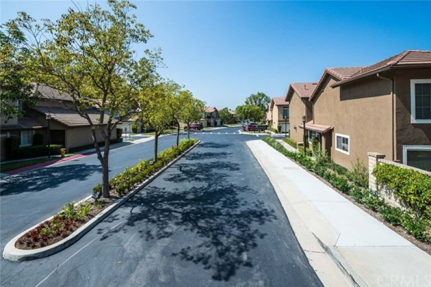 From the entry drive way, you see the recently paved street and manicured landscaping.