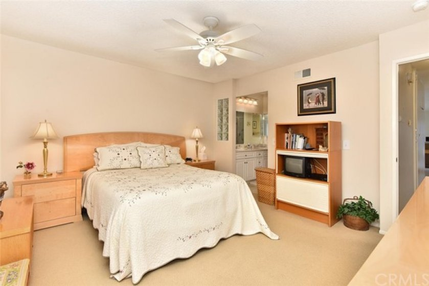 Master bedroom with en-suite, walk-in closet and remodel bath.