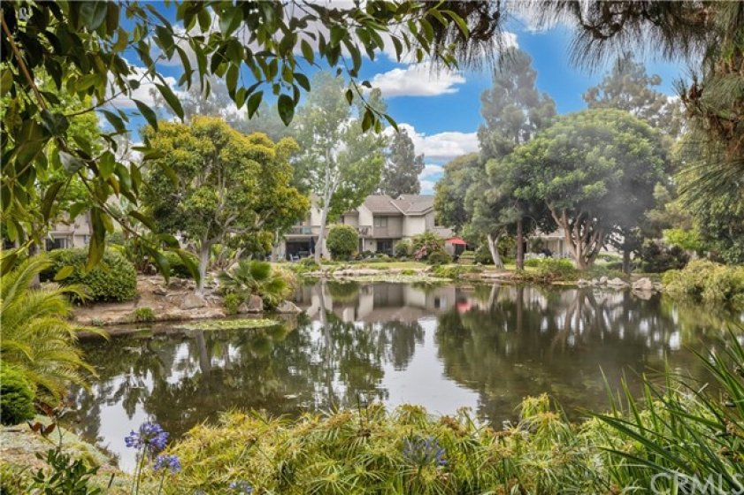 Pond view with lush landscaping and trees