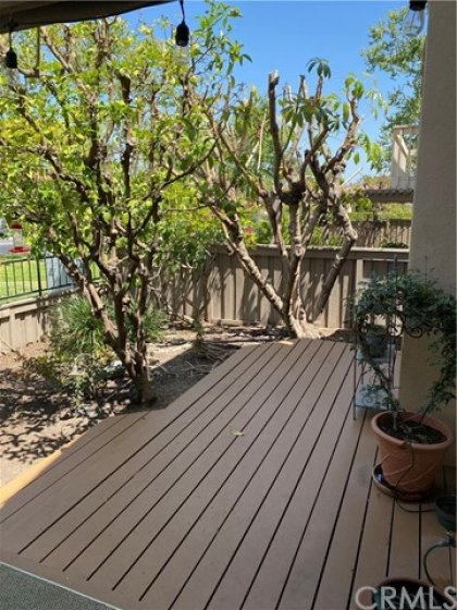 Patio decking and fruit trees