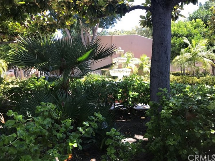 Beautiful Lush Landscaping Just Outside This Condo