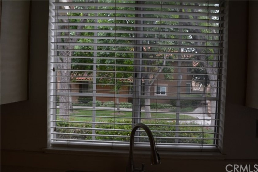 VIEW LOOKING OUT OVER THE KITCHEN SINK