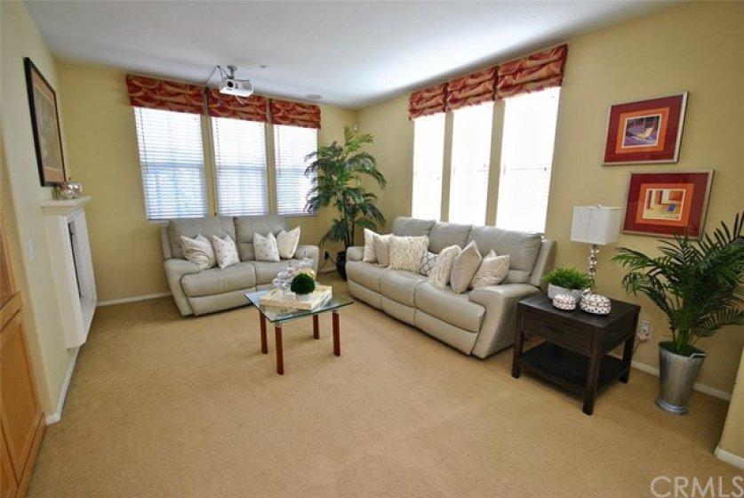 Plush Carpet in Living Room