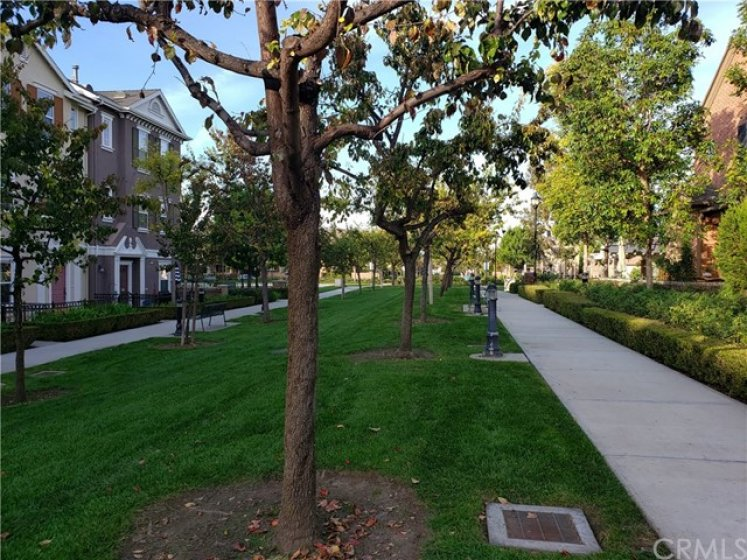 """Closer view of your """"front yard"""" that feels like yours but you don't have to mow it!  Lots of open space and greenery all around - nothing feels crowded here - it's just a lovely neighborhood to live in."""