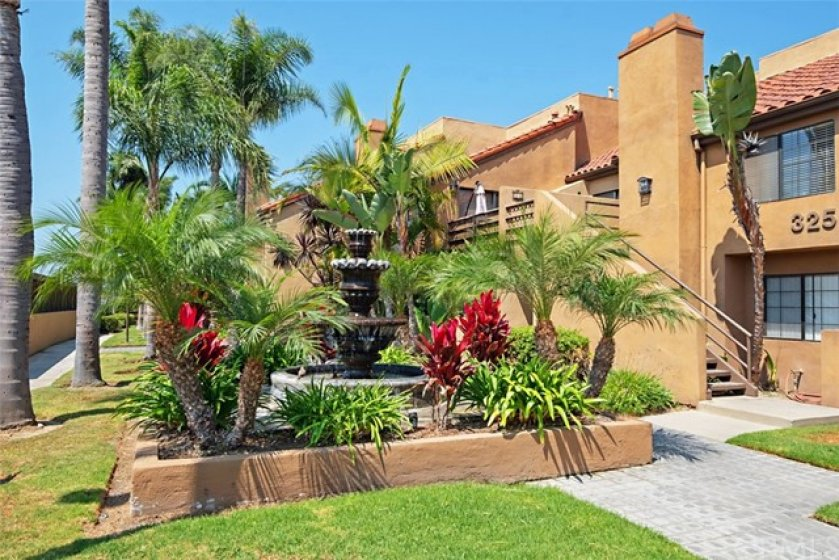 Lush Palm Trees add to the beauty of Villa St. Croix