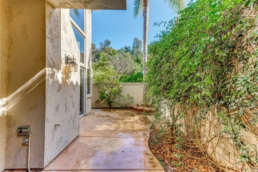 Wraparound backyard with a citrus tree, two mature palm trees and space for nice patio seating!
