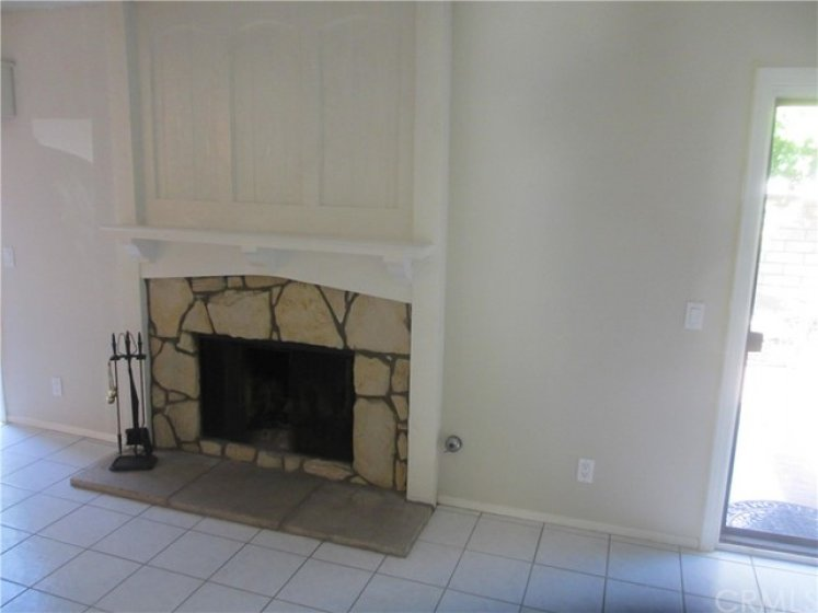 One of Two Fireplaces- This is the Livingroom