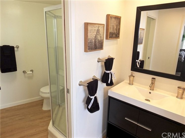 Guest bath and vanity