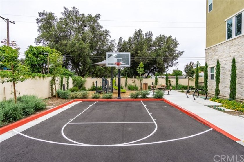 MINI Park and Basketball hoop