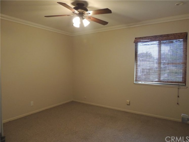 Good sized spare bedroom with bamboo shades, scraped ceilings, crown moulding, ceiling fan and view of greenbelt