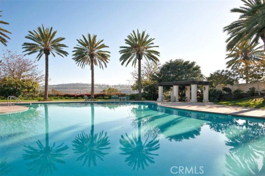 Beautiful Talega Pool