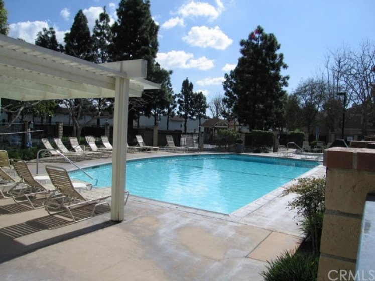 One of three complex pools.  This one is heated year round.