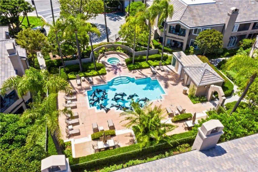 An areal view of the pool and spa.