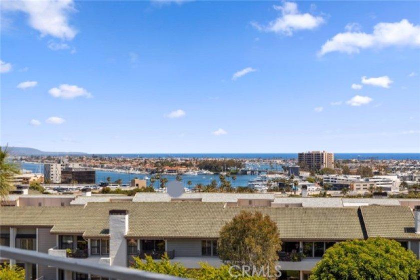 Harbor and ocean views