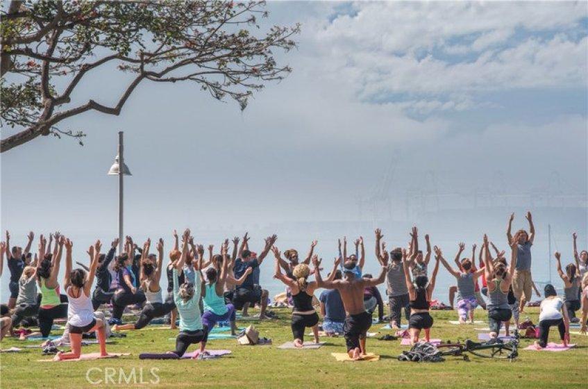 Yoga on the Bluff!