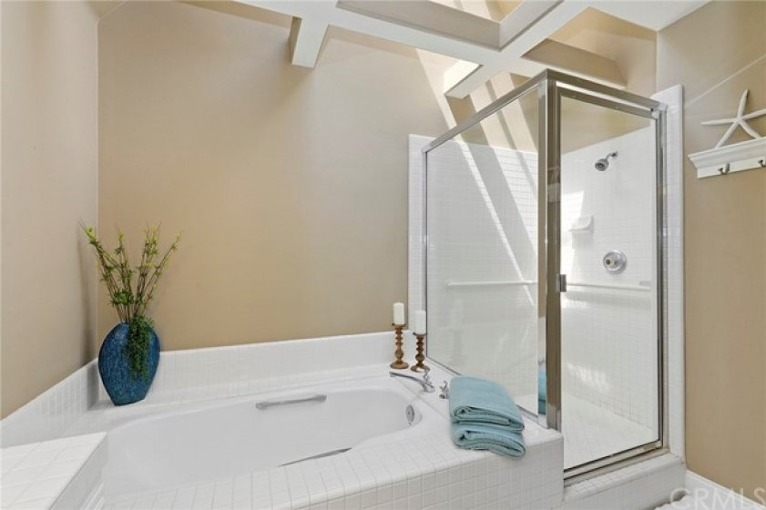 Master Bathroom with tub, stall shower and skylight