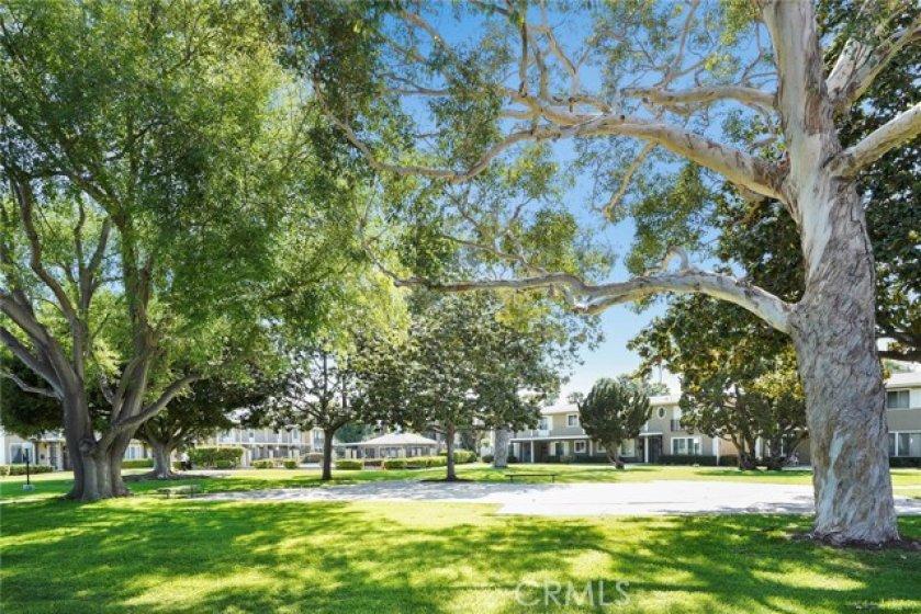 Pristine park like setting on peaceful greenbelt.