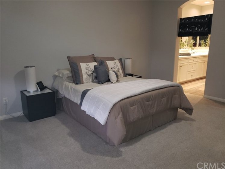 Very large master bedroom, carpeted plush and soft under bare feet - convenient master bath with dual sinks, soaking tub, separate walk-in shower - dressing area - live like royalty here!