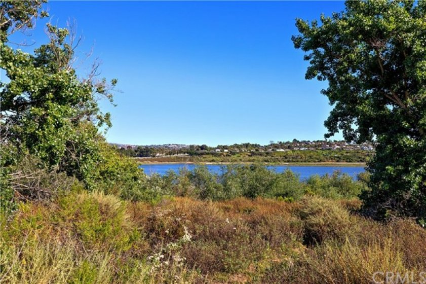 Bike trails and hiking trails are around the back bay, just a few minutes from the complex.