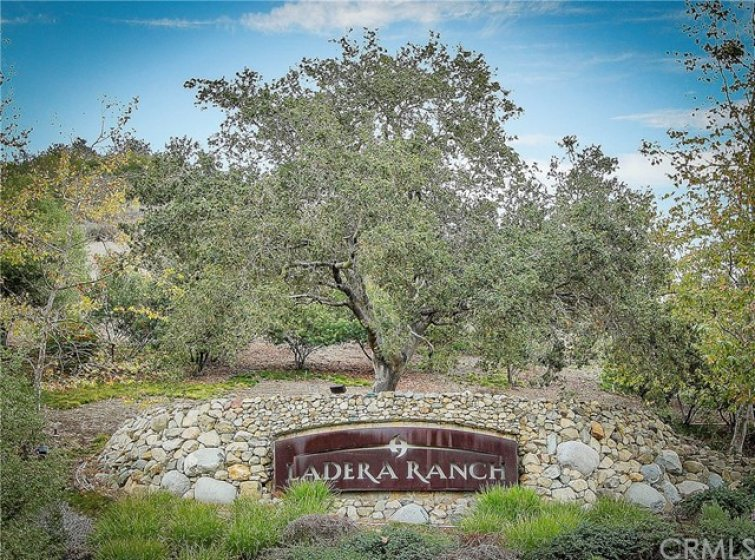 Welcome to Ladera Ranch, an affluent master-planned community located in south Orange County.