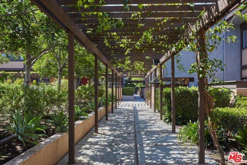 Beautiful Pergola Walkways
