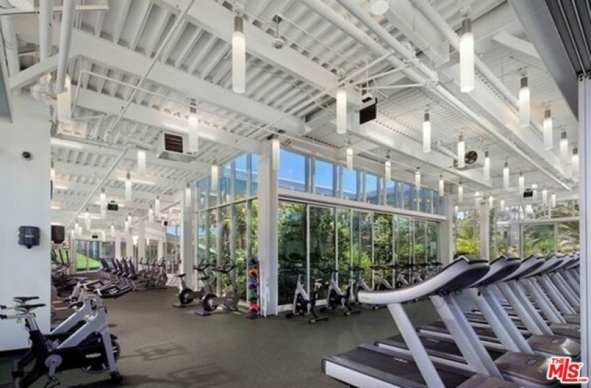 nd of  gyms