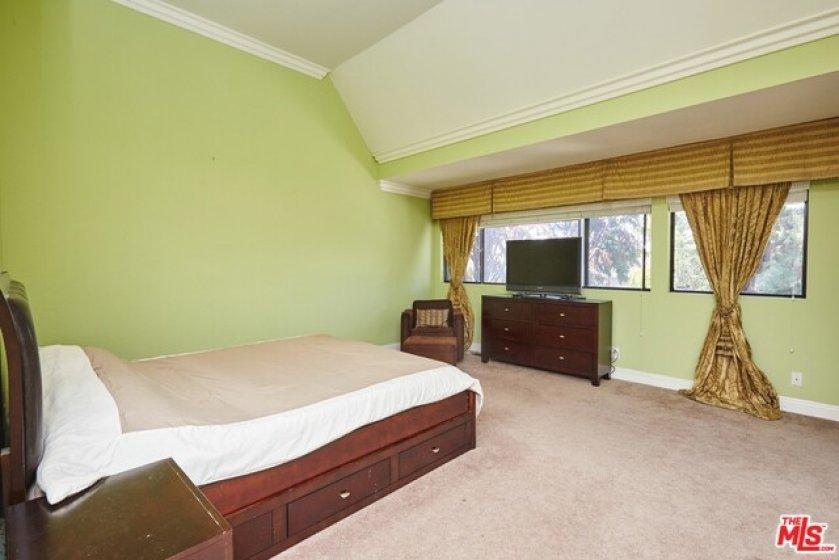 Master Bedroom Tree top views