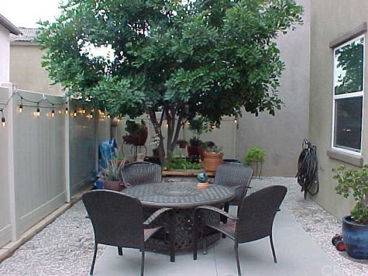 Private Backyard  Setting