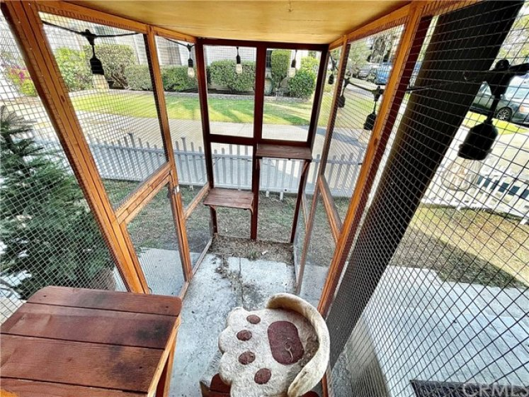 CAT/PET PATIO CONNECTING TO KITCHEN WINDOW
