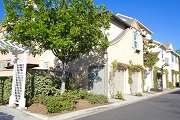 Arborage Ladera Ranch