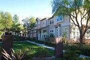 Briar Rose Ladera Ranch