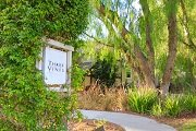 Three Vines Ladera Ranch