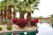 Santo Tomas Rancho Mirage