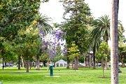 Coronado Village Neighborhood