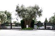 Vezelay Rancho Bernardo