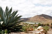 Westwood Rancho Bernardo