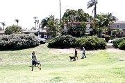 Plumosa Park San Diego