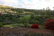 Rancho Dorado San Marcos