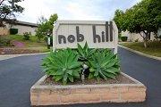 Nob Hill Vista