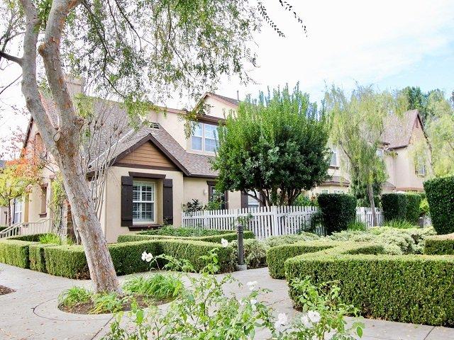 Three Vines Ladera Ranch