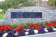 Bear Brand Ranch Laguna Niguel